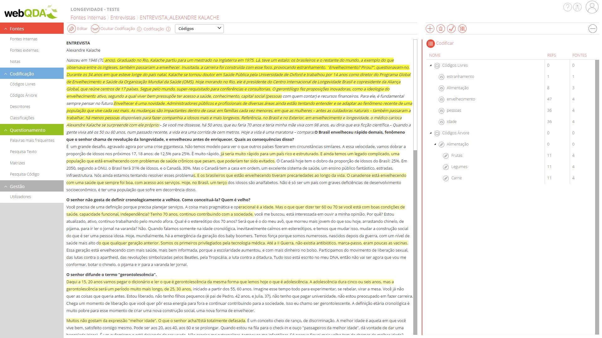 webQDA fontes internas codificação