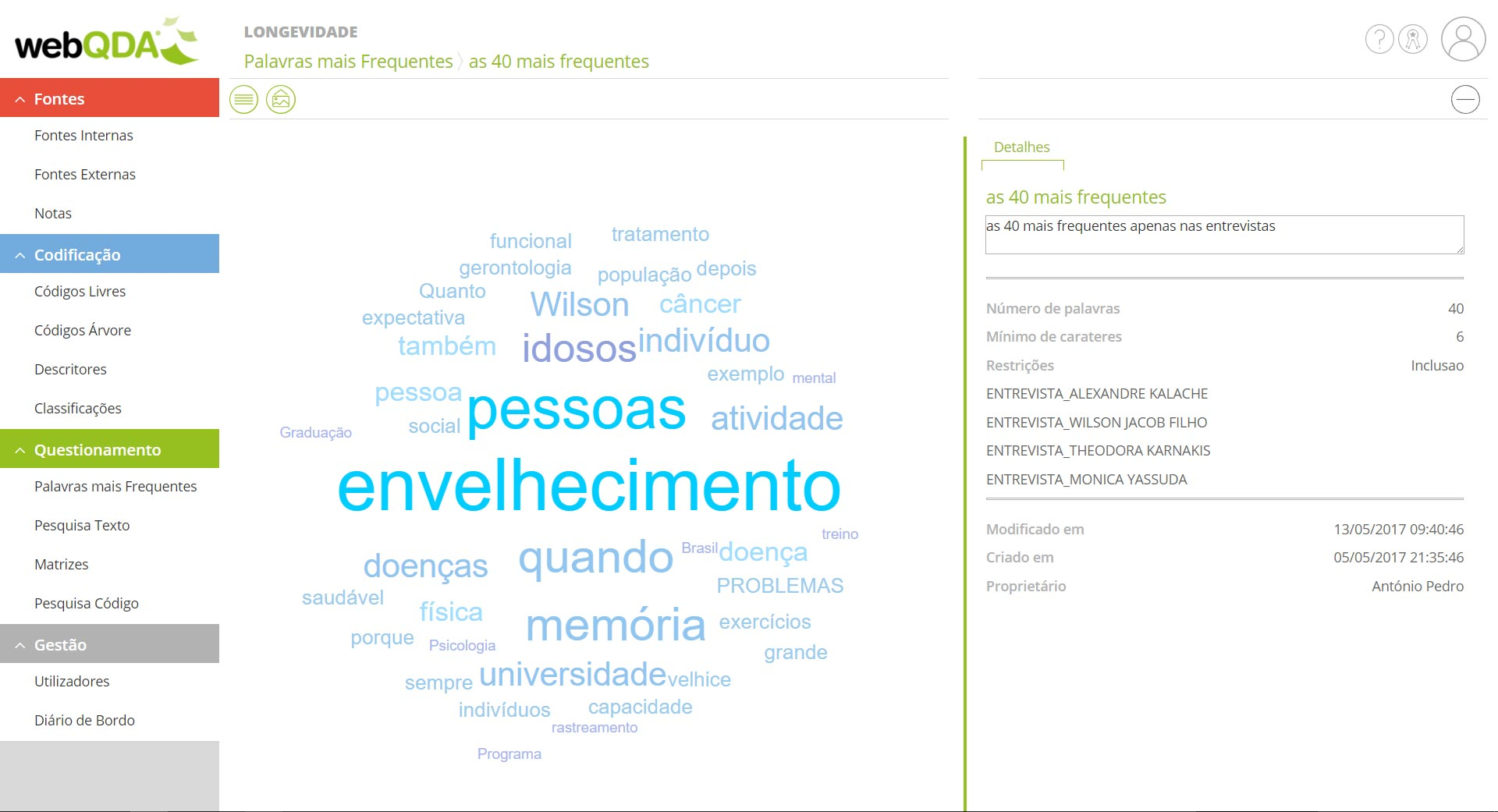 Nuvem de Palavras no webQDA