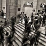 webQDA: contributos para a investigação na área de políticas públicas